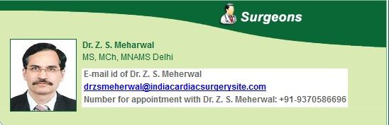dr-z-s-meherwal