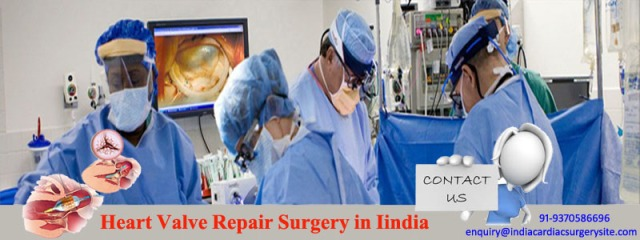 Heart Valve Repair Surgery in India